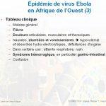 Ebola: tableau clinique et prophylaxie
